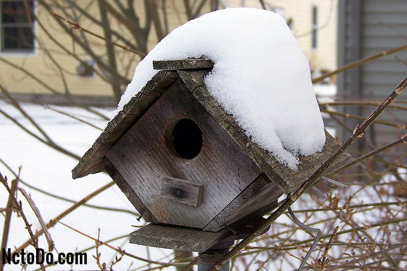 Winter Bird Shelters